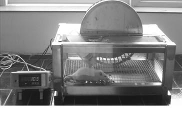 动物自身运动来驱动转轮运转的装置,它由自主跑轮装置,数据巡检记录仪